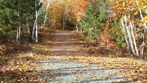 Hiking and enjoying the beautiful Autumn colours in the Conservation Area.