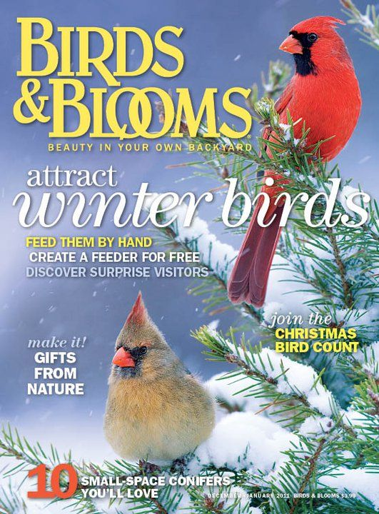 Bon Birds And Blooms   Americau0027s Backyard Birding And Gardening Magazine