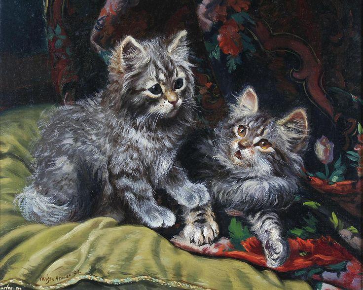Скачать обои животные, пушистые котята, Wilson Hepple 1600x1200
