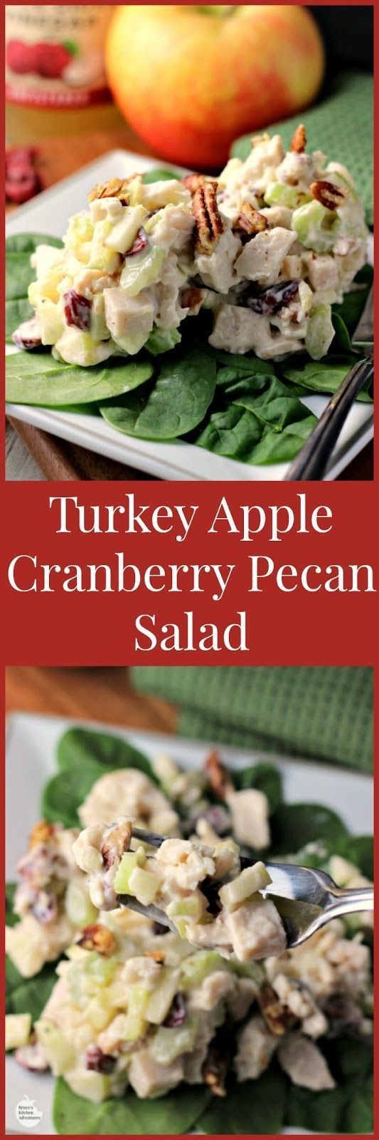 Turkey Apple Cranberry Pecan Salad. An easy healthy recipe for turkey salad. Makes a great lunch or dinner. Perfect way to re-purpose holiday leftovers!