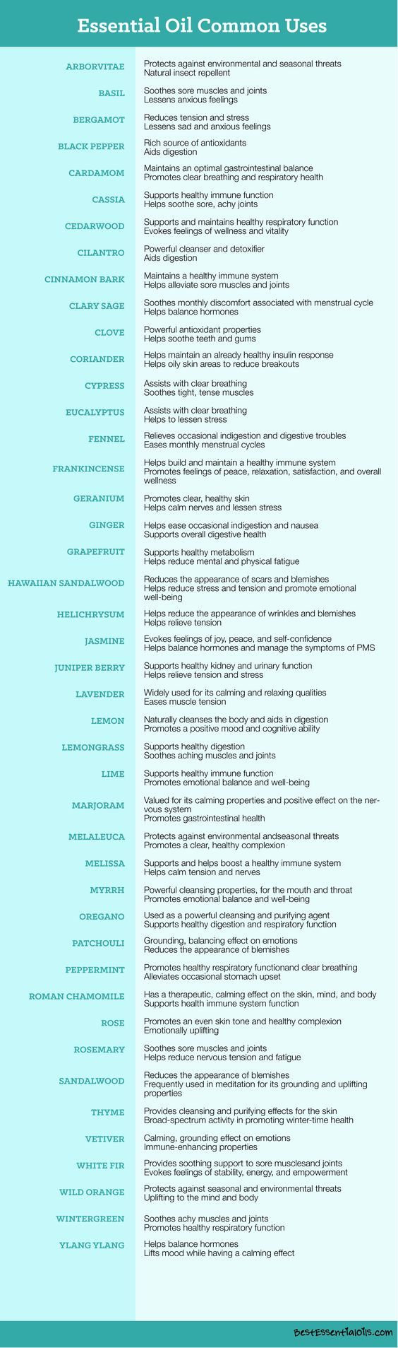 Just starting out with essential oils? Here are seven must-have charts to make you an essential oil expert in no time! Check them out!