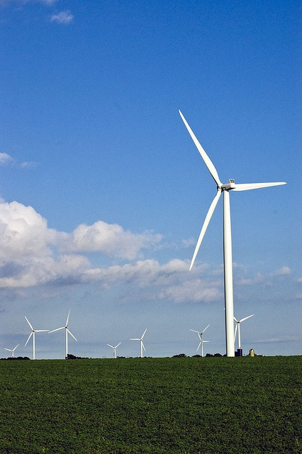 Wind turbines for electrical energy are very easy to put together right at home by making use of either a kitset or specific components ordered on the web. http://netzeroguide.com/windmills-for-electricity.html Windmill