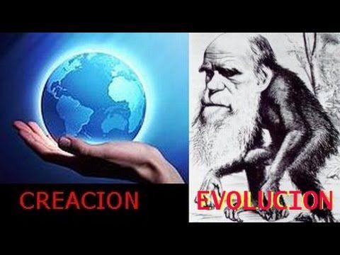 Creación contra Evolución - YouTube