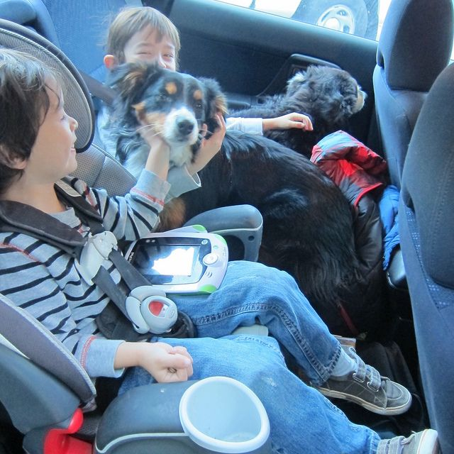 Moving across the country with your kids? What to do with those little ones in the back seat.