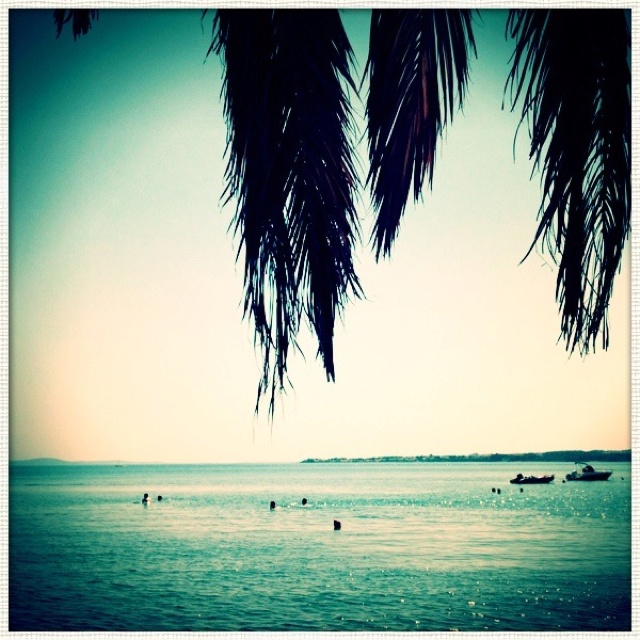 The island of Vir, Croatia.