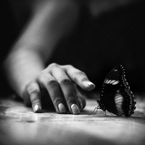 Красивые фотки | Рисунки, Черно-белая фотография, Фотографии