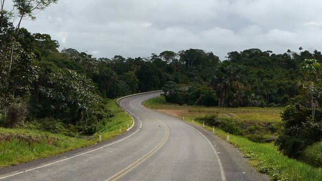 La Autopista de la Selva / The Jungle Highway (Spa/Eng) by CONNECTAS