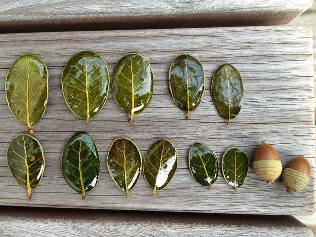 minne(ミンネ)  本物葉っぱを使ったかわいいブローチ