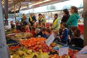 Groep 1-2 van de #Daltonschool #deklimop is gestart met het project omgaan met de natuur | samen een groente- en fruitkraam en kijken hoe het gekweekt wordt | om inspiratie op te doen voor het eigen kraam een bezoekje aan de markt in Bergen.