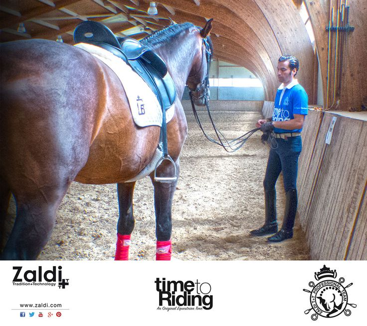 Buenos días ¡Por fin es viernes!   Ya falta menos para estar sobre los caballos.   Nosotros ya estamos listos para ello. En la fotografía aparece la silla de doma DRIM con TM-System (taco-muslera) de serie, como reza nuestro eslogan T+T, de Tradición y Tecnología.   - -  Hi, morning. At last it's Friday! Soon on the horses.   Ready to face a new challenge this week-end!! We are constantly evolving, continuously seeking to improve. In this picture, a dressage saddle: DRIM with Thigh-Block.