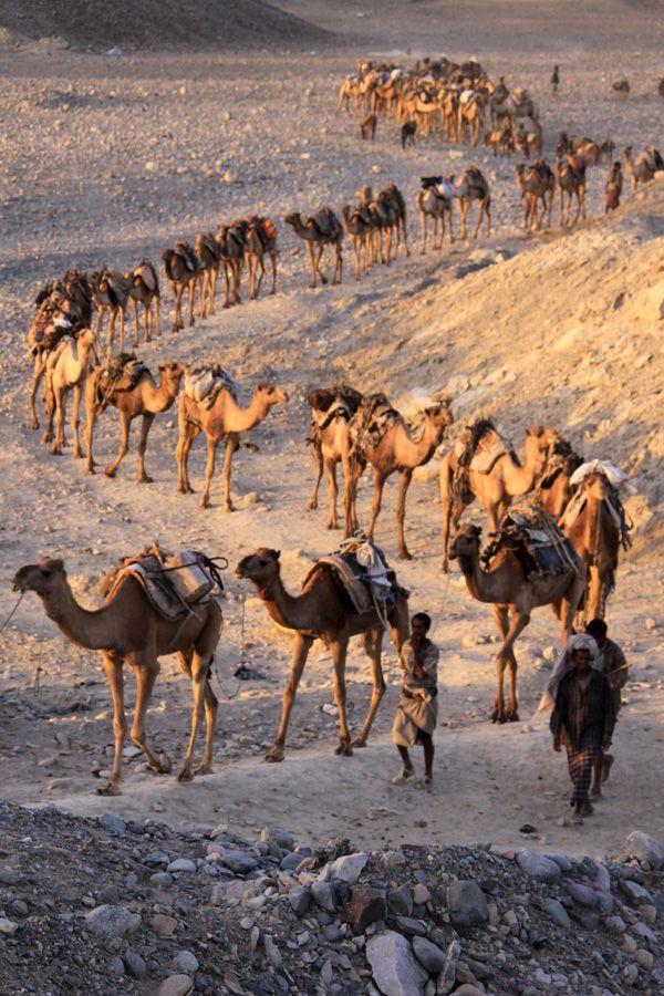20120205212326_ethiopie_2011_1106b
