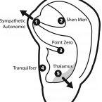 Esta combinación de acupresion en la secuencia de puntos  favorece la circulación, alivia la tensión muscular y estimula la capacidad de curación del propio cuerpo. Resulta  ideal para las personas que tienen  tensión y dolores de brazo por el uso prolongado del teclado,  ratón, escritura, o cualquier otro movimiento repetitivo. Vamos a ver la secuencia …