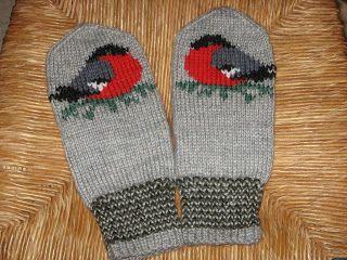 Suden silmukat: Punatulkkulapaset
