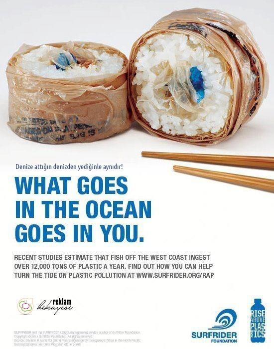 Denize attığın denizden yediğinle aynıdır!