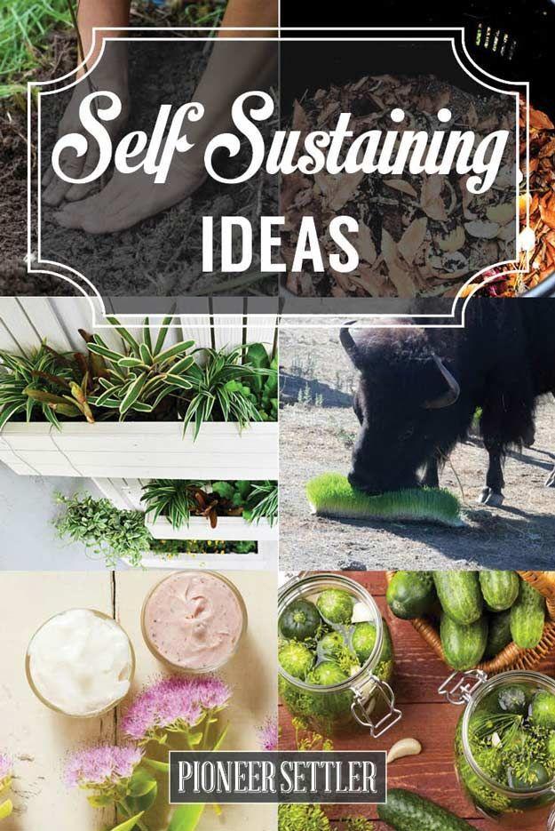 Self-Sustaining Ideas For Living The Homesteader's Dream | Best Homesteading Tips For Beginners by Pioneer Settler at http://pioneersettler.com/self-sustaining-ideas-living-homesteaders-dream/