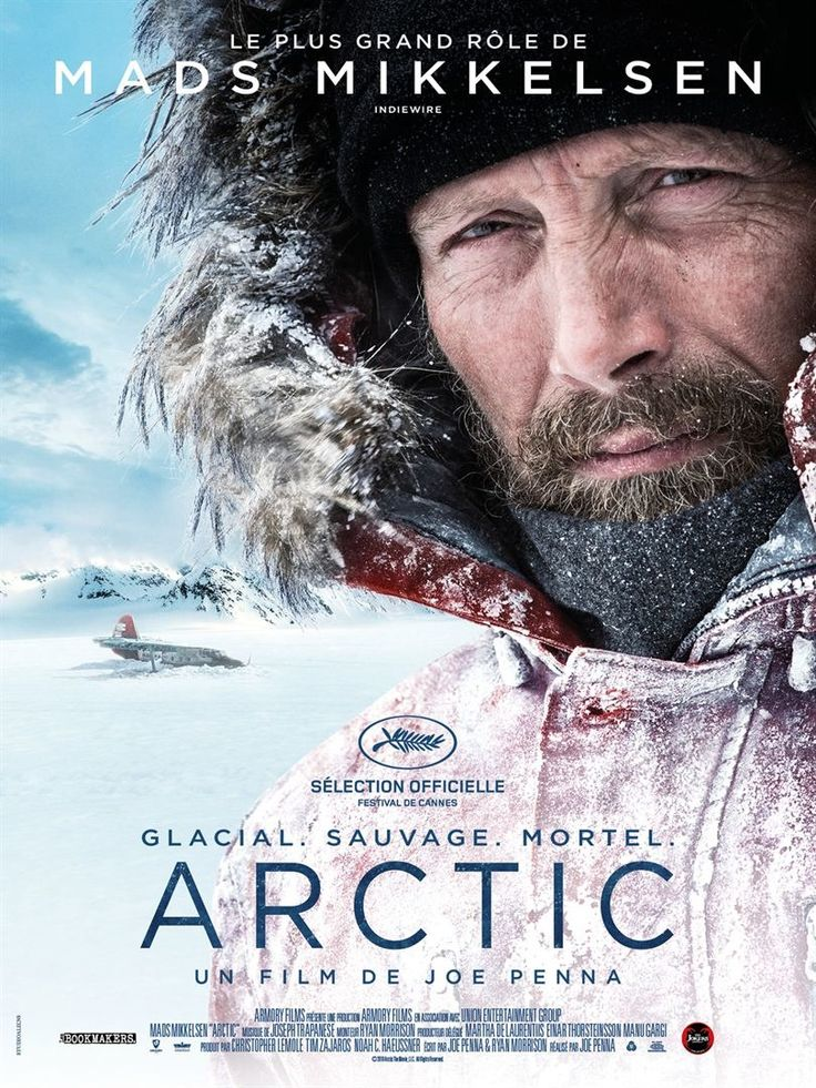 Return to the main poster page for Arctic (#3 of 3)