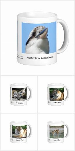 Coffee Mugs based on wildlife in our area