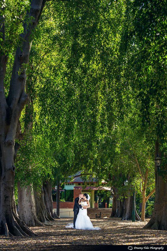 Wedding Photography in Brisbane Botanical Gardens