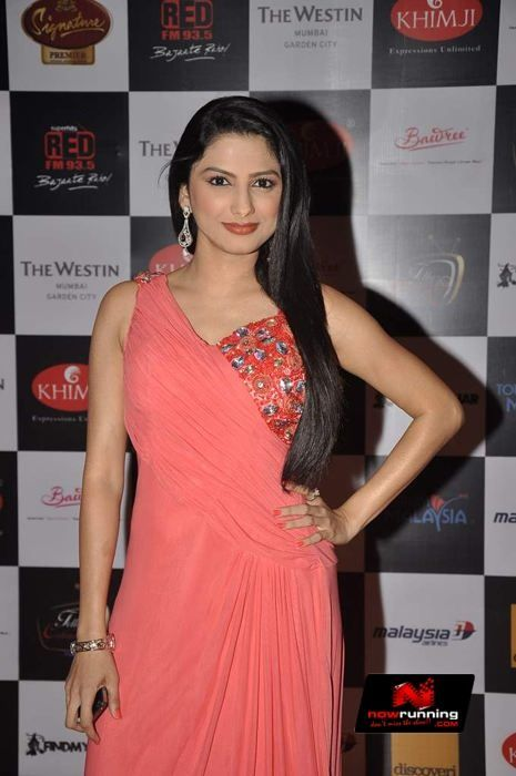 Rucha Hasabnis at Telly Calendar 2014 Launch