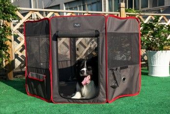 Here's our review of one of the best portable dog playpens - Petsfit Portable Foldable Pop Up Dog Playpen Exercise Pen  http://bestdogcratesandbeds.com/product-reviews/best-portable-dog-playpen/petsfit-portable-foldable-pop-up-dog-playpen-exercise-pen-review/