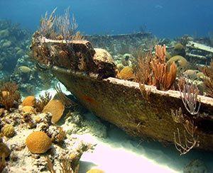 Treasures Of The Sea| Serafini Amelia| Bermuda Triangle Shipwreck!