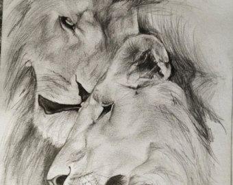 Pencil drawings of animals. I'll draw by TheKestrelAndTheSea