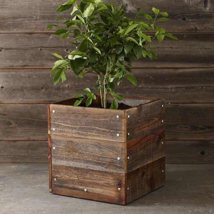 14 best images about square rectangular planter boxes on for Wooden studios for gardens
