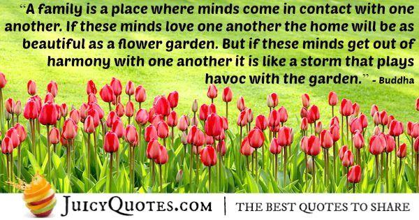 Buddha Quote - 98