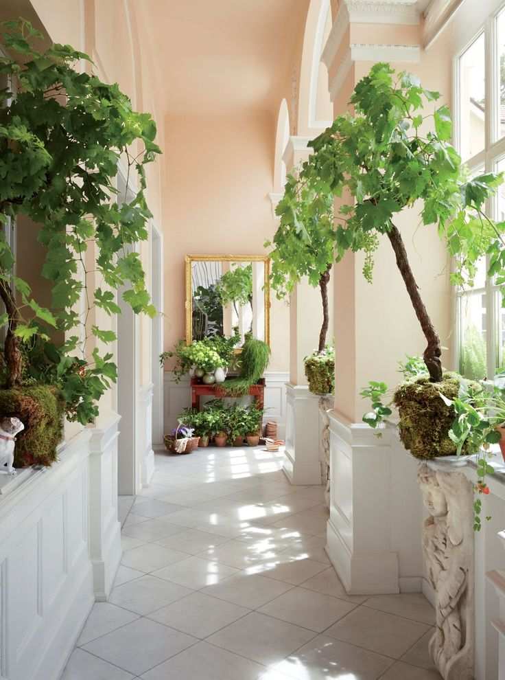 A light-flooded entrance hall has the atmosphere of an orangery.