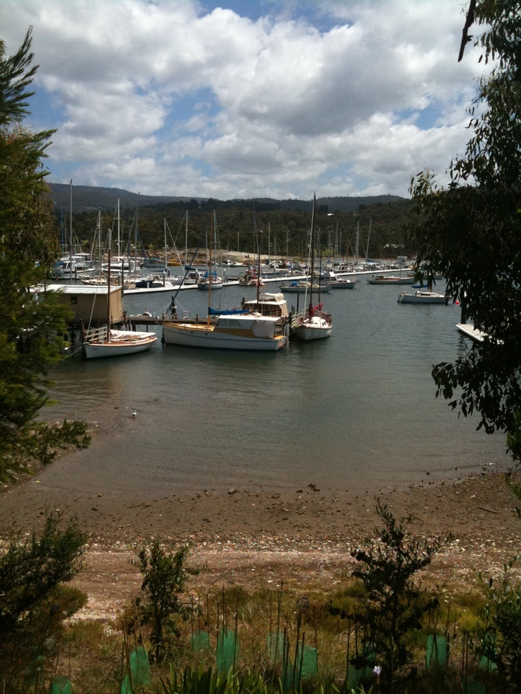 Kettering, a view of the marina. departure point for Bruny Island.