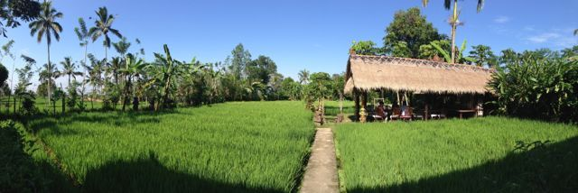 our dining room in the rice paddies... simple