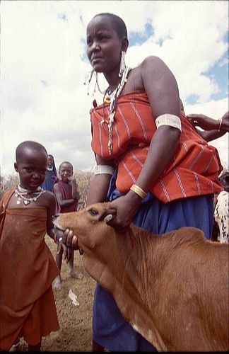 WOMEN IN LIVESTOCK DEVELOPMENT: 'The role livestock play in women's livelihoods in Africa and Asia: New review', ILRI News Blog, 3 Jan 2011