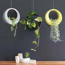 Vertical Gardens | Hanging Planter | OutdoorThe Block Shop - Channel 9
