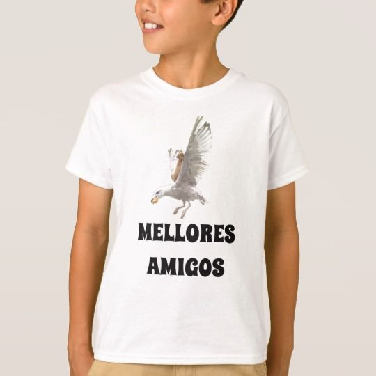 A cat and a seagull and best friends in Galician T-Shirt White T-shirt with with a orange cat riding on a flying seagull with the Galician text mellores amigos, that can be translate to, best friends. You can customize this t-shirt to give it you own unique look, you can change the text font and color, t-shirt type and add more text or change text.