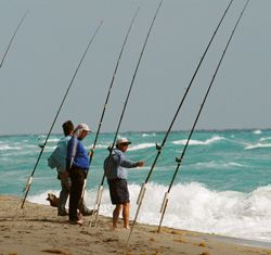 You don't need a big expensive boat for productive saltwater fishing. But before you head to the beach, check out these tips on reading the ...