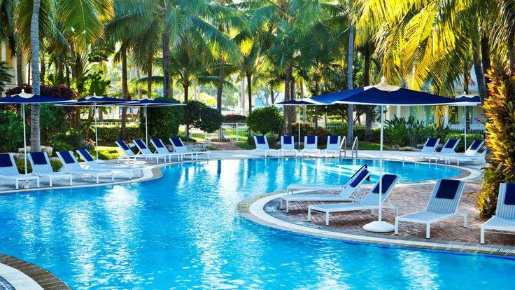 Palm Tree Resort In Florida Keys - Buy The Right Palm Tree at The Palm Trees Store #RealPalmTrees #BuyPalms #BuyPalmTrees #PalmStore #FloridaPalmTrees#PalmTreeLandscaping