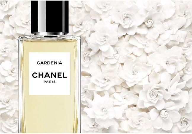 Les Exclusifs de Chanel: Gardénia perfume
