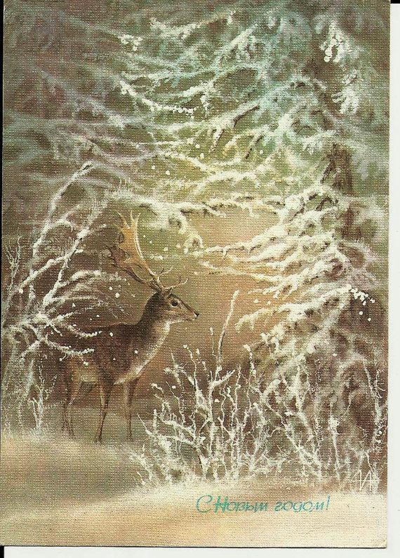 Deer in winter forest-Russian Postcard-New Year Vintage Card
