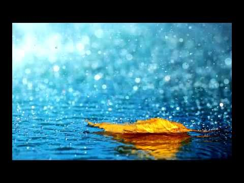 10 Hours Rain and Thunder Healing Sounds for Deep Sleeping Meditation Relaxation Ambient Spa Sounds - YouTube