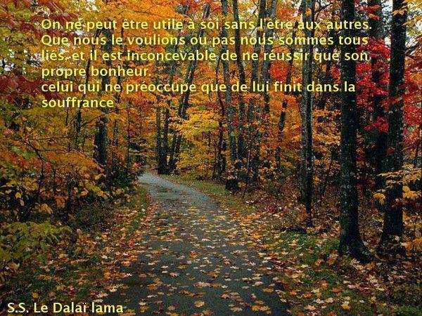 Celui qui s'occupe que de son propre bonheur , finit dans la souffrance - Dalaï lama