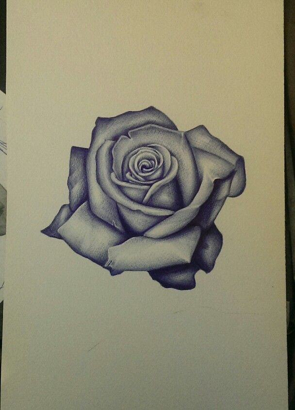 This would really be a nice rose tattoo. And in the back of the rose a nice vintage shading of a cross