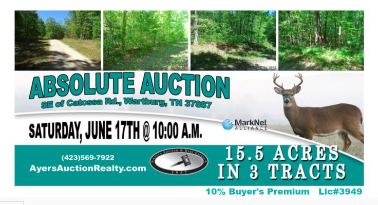 Land auction, Ayers Auction & Real Estate, Saturday, June 17th, 2017 at 10 am. 15+ acres in 3 tracts, absolute auction.  Catoosa Rd., Wartburg, TN. 10%bp, Lic#3949