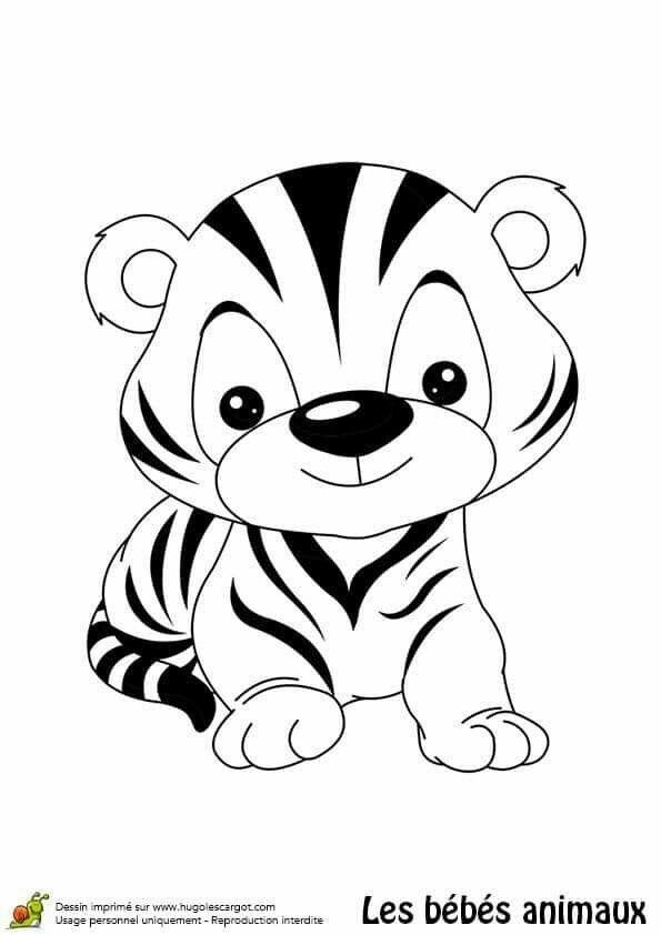 Pin De Mauren Guzman En Tigre Con Imagenes Dibujo De Animales