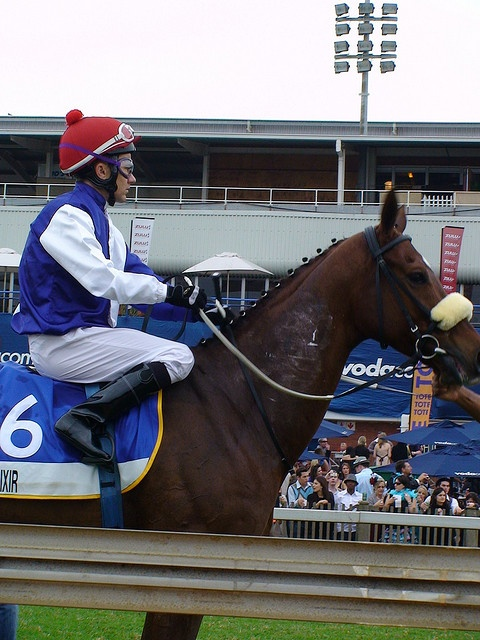 Horses on Parade at the Durban July by South African Tourism, via Flickr