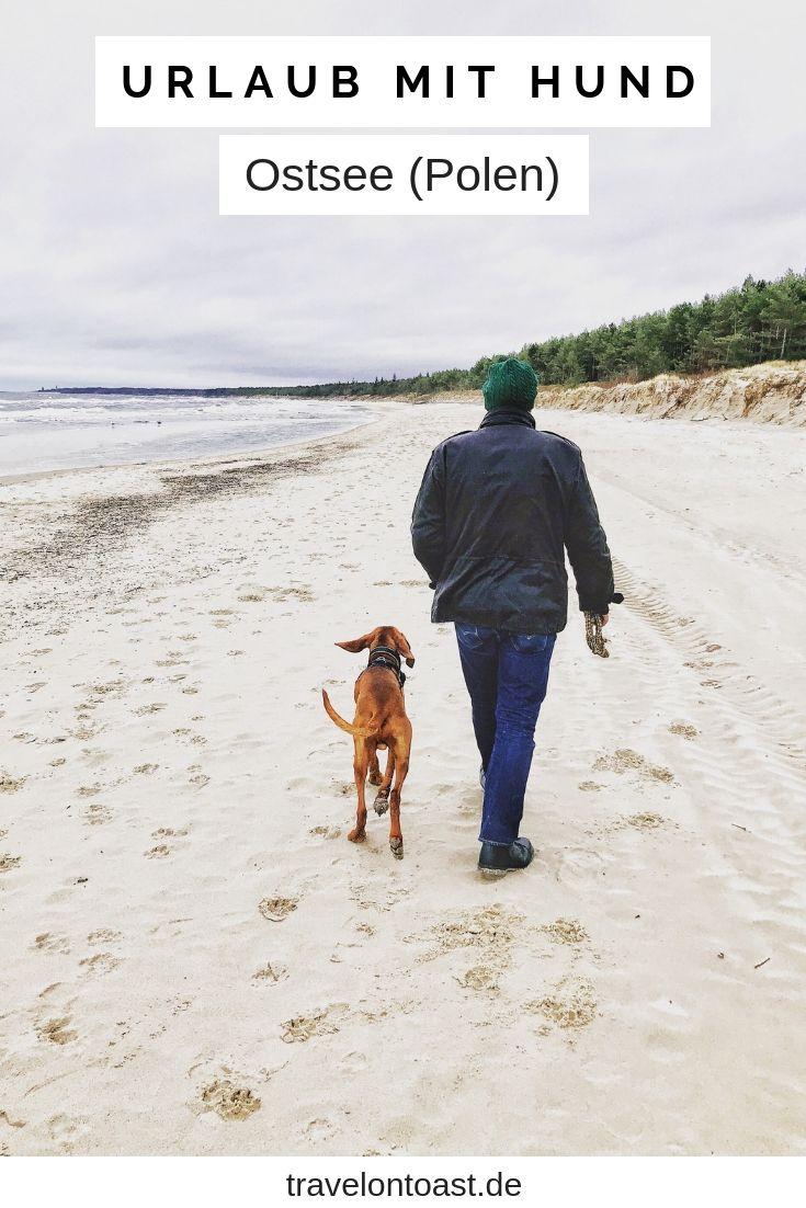 Polnische Ostsee Kolberg Urlaub 2020 Erfahrungen Und Tipps Travel On Toast Urlaub Mit Hund Urlaub Mit Hund Ostsee Urlaub