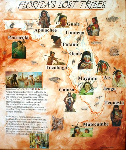Early Tribes of Florida - When Europeans arrived in south Florida in the 16th century, they found at least five established tribes, which they brought into the historic period by writing about them. The Mayaimi, the Tequesta, the Jeaga and Jobe, the Calusa , and the Ais Indians.