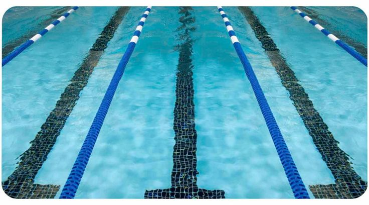 Black Friday Special Lane Lines swim swimmer swimming pool phone case iPhone 4, 5, 5c, 6, 6 plus Samsung 4,5 iPod 4,5 by FlipTurnTags on Etsy