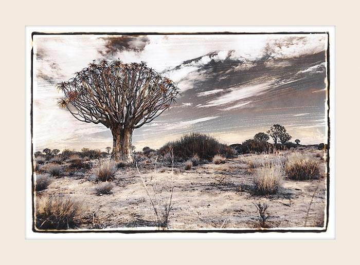 Tribal Tree - Marlene Neumann