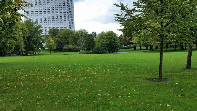 Groen grasveld, Rotterdam