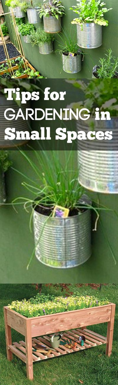 Small Space Gardening Ideas vertical gardening saves space Tips For Gardening In Small Spaces